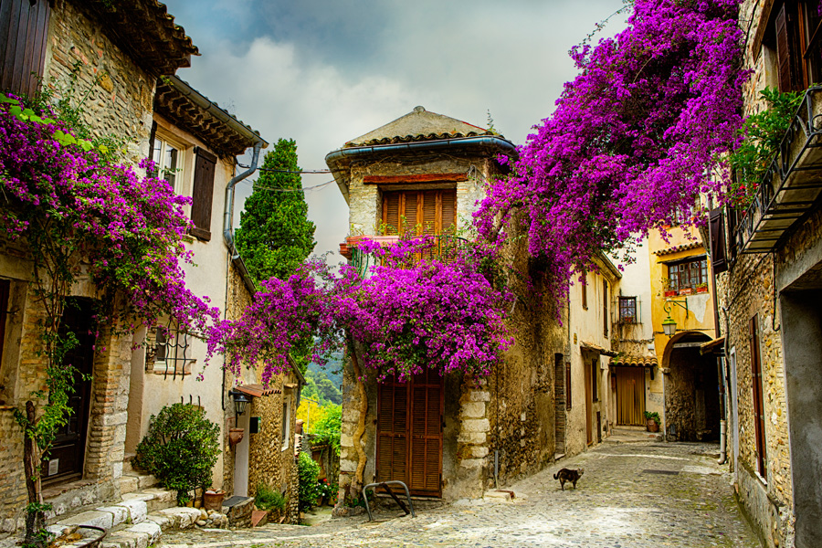 French homes houses